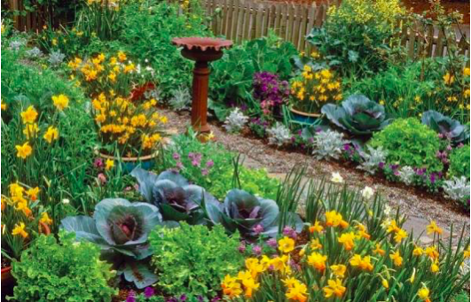 8 Awesome Space Saving Gardening Techniques